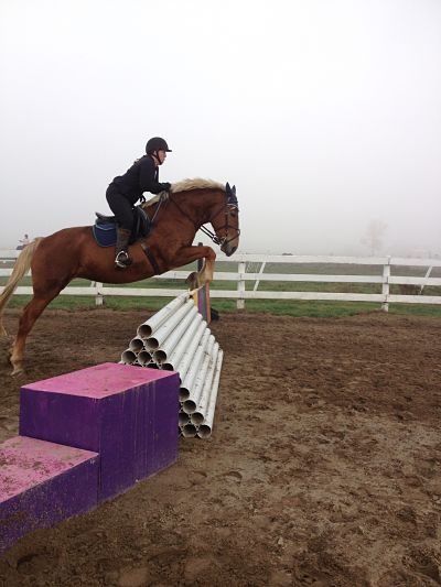 Jumping lesson at Preston Rosedale Farm